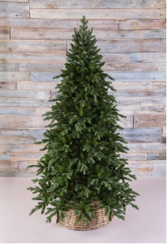 Сосна Ноттингемская 155 см зеленая