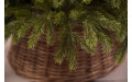 Фото:  Елка Коттеджная full РЕ 215 см зеленая Black Box-2