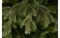 Фото:  Сосна Ноттингемская 230 см зеленая Triumph Tree-2