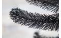 Фото:  Сосна Санкт-Петербург 185 см черная Triumph Tree-1