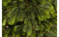 Фото:  Елка Раскидистая 215 см зеленая Black Box-3
