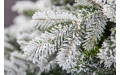 Фото:  Искусственная елка Сибирская 185 см заснеженная Black Box-2
