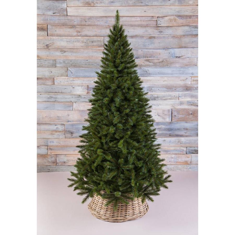Фото:  Елка Лесная Красавица стройная 230 см зеленая Triumph Tree