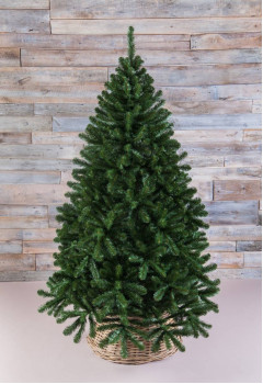 Сосна Рождественская 215 см зеленая
