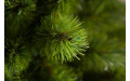 Фото:  Елка Триумф Норд 260 см зеленая Triumph Tree-2
