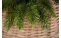 Фото:  Елка Триумф Норд 365 см зеленая Triumph Tree-3