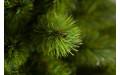 Фото:  Елка Триумф Норд 60 см в мешочке зеленая Triumph Tree-2
