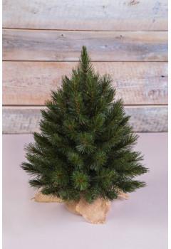 Елка Лесная Красавица 45 см в мешочке зеленая