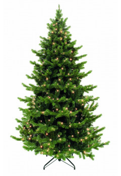 Елка Шервуд премиум 600 см 3728 ламп зеленая