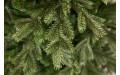Фото:  Елка Шервуд премиум 120 см зеленая Triumph Tree-6