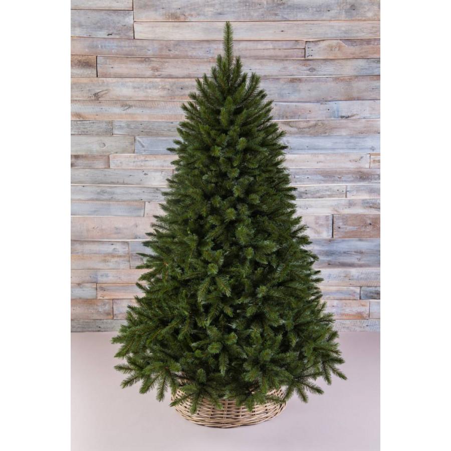 Фото:  Елка Лесная Красавица 215 см зеленая Triumph Tree